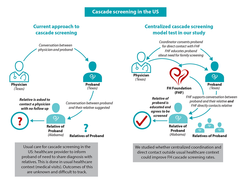 A proof-of-concept study of cascade screening for Familial Hypercholesterolemia in the US, adapted from the Dutch model