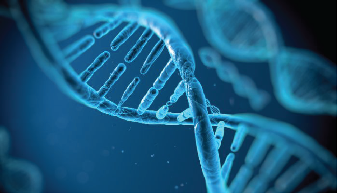 genetic testing for familial hypercholesterolemia