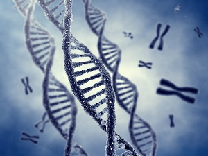 Genes hold the DNA in our bodies.